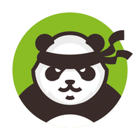 детской школы единоборств «Боевые панды»