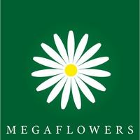 цветочного магазина «Megaflowers»